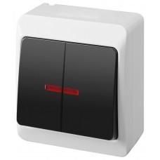 Зовнішній вимикач двоклавішний з підсвічуванням 0342-01