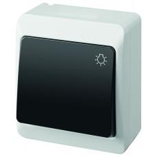 """Наружний вимикач """"Світло"""" HERMES™ 0336-01"""